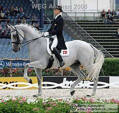 Love this horse! You can tell she loved to dance with the music! RIP Blue Hors Martiné