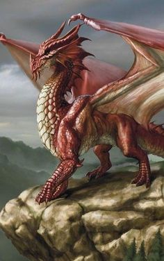 """""""Red Dragon"""" by Lars West-Grant"""