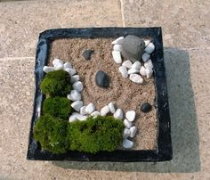 mini zen garden with nature moss, cream sand & white stone, DIY. Must do with my moss.