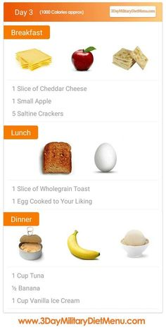 Military Diet Day 3 Meal Plan