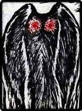 Mothman is an unidentified creature reported as a large, seven-foot, grey creature with man-like legs, bat-like wings and horrifying red eyes. The creature is said to have no head with it's eyes stuck to its chest and its arms are replaced by the wings, which are used to fly at over 100 mph.