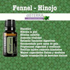 Fennel Посмотреть о маслах терапевтического класса : http://100111619.nweshop.ru/catalogue/doterra #рак #doterra #болезнь #аромамасла