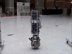 Rezero - Ballbot Performance Display
