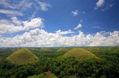 Chocolate Hills.  One of the top tourist attractions in the Philippines, The Chocolate Hills are unusual geological formations that consists of at least 1,268 individual mounds scattered throughout the interior of the island of Bohol. During the dry season the grass turns brow, hence the name. The  theory that  holds how these hills were formed, is that the Chocolate Hills are the weathered rock formations of a kind of marine limestone on top of an impermeable layer of clay.