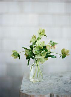 Floral Design: Flowers on Chestnut - http://www.stylemepretty.com/portfolio/flowers-on-chestnut Photography: Clayton Austin - http://www.stylemepretty.com/portfolio/clayton-austin   Read More on SMP: http://www.stylemepretty.com/2015/05/07/rustic-elegant-nantucket-spring-wedding/