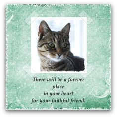 Free Cat Sympathy Card ~ to print or to share online.
