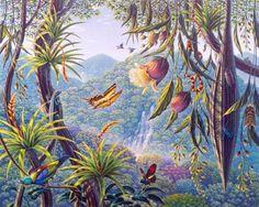 Vidas na Floresta
