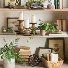 Birch Lane – Traditional Furniture & Classic Designs – Home Decor Styling Bookshelves, Decorating Bookshelves, Bookcases, Decorate Bookcase, Birch Lane, Milk Can Decor, Traditional Furniture, Traditional Decor, Home And Deco