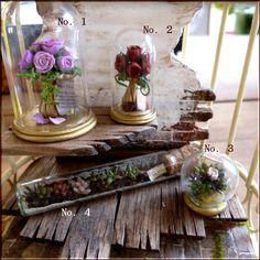 Nueva botella de vidrio de plantas suculentas y otros tres cúpula de cristal completado ♪ casa de muñecas en miniatura Yahoo! Subastas de imagen | miniatura bambini Doll House Interior de la habitación