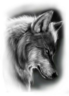 Wolf Sleeve, Wolf Tattoo Sleeve, Lion Tattoo, Sleeve Tattoos, Wolf Face Tattoo, Wolf Tattoo Design, Tattoo Design Drawings, Tattoo Sleeve Designs, Tattoo Sketches