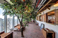 Locaux de Google à Tel Aviv