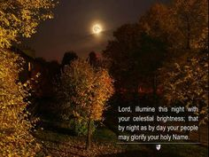 Lord, illumine this night with your celestial brightness; that by night as by day your people may glorify your holy Name. ~ The Book of Common Prayer