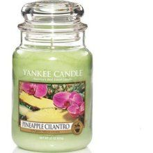 Favorite Yankee Candle....Pineapple Cilantro