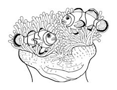 nemo clown fish coloring pages | 123 Best Marine life coloring pages images in 2019 ...
