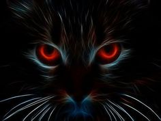by Trina – Coole kunst – … - Cats and Dogs House Black Cat Art, Black Cats, Magic Cat, Wow Art, Tier Fotos, Cat Drawing, Fractal Art, Beautiful Cats, Crazy Cats