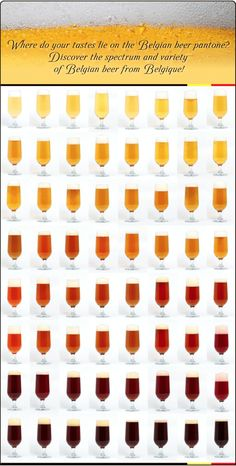 The Belgian Beer Colour Spectrum by Belgique - Where do you lie? From white or blonde, through amber and gueze, to Trappist dark brown - there's a beer for everyone at Belgique.co.uk