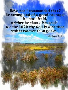 """Have I not commanded you? Be strong and of good courage; do not be afraid, nor be dismayed, for the Lord your God is with you wherever you go."""" [Joshua 1:9]"""