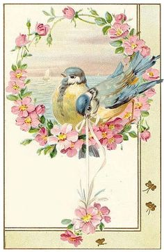~ The Feathered Nest ~: Finding the beauty in each day ~vintage birthday Birthday Tags, Vintage Birthday Cards, Vintage Greeting Cards, Vintage Ephemera, Birthday Greeting Cards, Vintage Paper, Vintage Postcards, Happy Birthday, Birthday Greetings