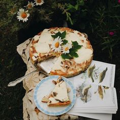 Halloween Disfraces, Aesthetic Food, Let Them Eat Cake, Food Photography, Picnic, Sweet Treats, Buddha, Snacks, Baking