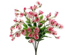Pink Sweet Pea Bush - may use a few stems in the bouquets