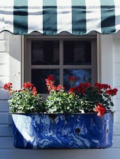Garden Spirit ~ Use an oblong blue splatterware metal container as a window flower box for bright red geraniums.