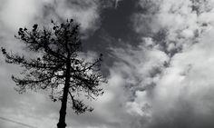 Céu revoltado - Angry Sky