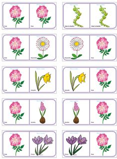 Dominos des fleurs de printemps et d'été - planche à imprimer Spring Activities, Learning Activities, Activities For Kids, Board Game Template, Plantation, Botany, Kids And Parenting, Montessori, Flower Power