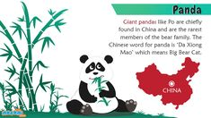 """Giant Panda Facts and Information - In China, a giant panda is known as """"da xiong mao"""", which means big bear cat. For more #GK articles for kids, visit: http://mocomi.com/learn/general-knowledge/"""
