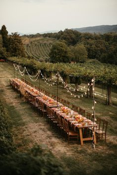 Forest Wedding, Boho Wedding, Field Wedding, Wedding Music, Yellow Wedding, Handmade Wedding, Wedding Locations, Wedding Venues, Tuscany Wedding Venue