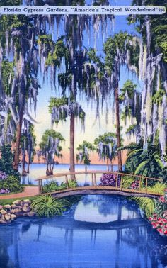 Tropical decorating inspiration from 12 vintage Florida postcards - Retro Renovation Old Florida, Vintage Florida, Florida Travel, Florida Style, Florida Girl, Visit Florida, Tropical Home Decor, Tropical Houses, Tropical Colors