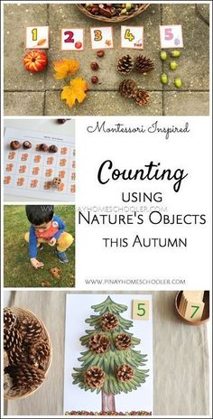 Fall Counting Activities Using Nature's Objects (FREE Printable) - Montessori Fall Preschool Activities, Montessori Preschool, Nature Activities, Toddler Activities, Learning Activities, Seasons Activities, Number Activities, Montessori Elementary, Counting Activities For Preschoolers