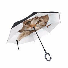 1d62abfa4a1a 10 Best Cat Umbrellas images in 2019 | Cat umbrella, Cat design, Cats