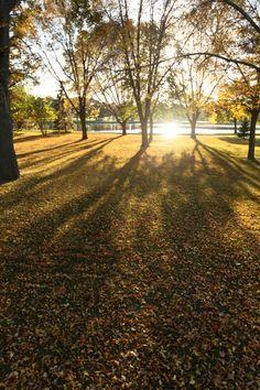 Fall beauty can't be beat in Oshkosh, Wisconsin