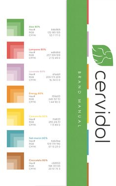 Brand Manual Elements