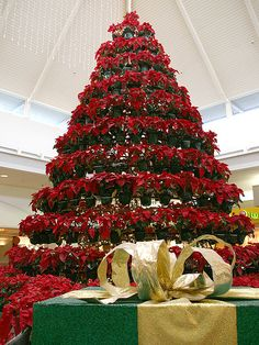 Pointsetta Tree! this would be amazing for the wedding but very pricey!!