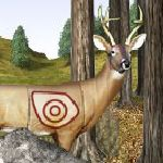 Shoot a Deer with a Bow