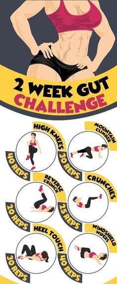 TWO WEEK GUT CHALLENGE | Woxtips