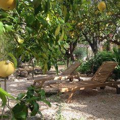 Mediterrane Gartengestaltung Und Pflanzen U2013 75 Ideen #gartengestaltung # Ideen #mediterrane #pflanzen