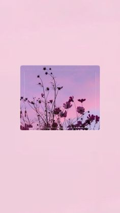 The Best Wallpapers With Flowers – Phone Wallpapers Mood Wallpaper, Iphone Background Wallpaper, Aesthetic Pastel Wallpaper, Aesthetic Backgrounds, Tumblr Wallpaper, Colorful Wallpaper, Disney Wallpaper, Aesthetic Wallpapers, Sunset Wallpaper