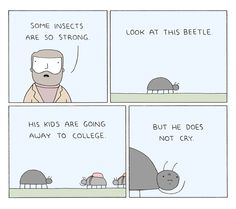 Poorly Drawn Lines #beetles are strong #tears #inspiration