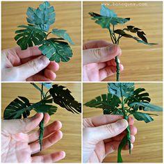 Tutorial plant