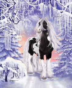 Journey into a magical world of horses.