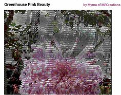 Greenhouse+Pink+Beauty+Peyote+Pattern+(in+PDF)