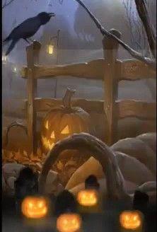 Happy Halloween Gif, Happy Holloween, Happy Halloween Pictures, Fröhliches Halloween, Halloween Images, Halloween Themes, Vintage Halloween, Halloween Backgrounds, Halloween Wallpaper
