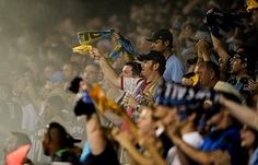 Demographics and insights to MLS fans