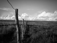 Antique Wire Fencing - Bing Images