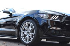 anniversary protected with Ceramic Coating, 50th Anniversary, Ford Mustang, Vehicles, Car, Ford Mustangs, Automobile, Autos, Vehicle