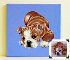 Custom Dog Portrait / Custom Pet Portrait   1 by TheStardustStudio, $57.45