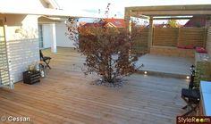 pergola,rosenapel,altan,trädäck