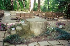 At Lily Dale, in a grove surrounded by magnificent old trees, is Inspiration Stump. This is the site of some of the most profound spiritual energy in all of Lily Dale. It is not unusual for visitors to the Stump to experience a strong sense of heightened awareness and profound peace.